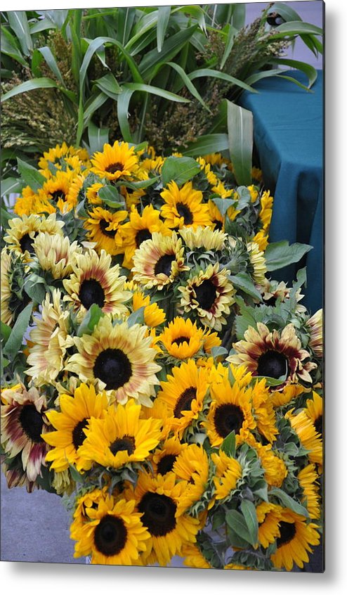 Flowers. Sunflowers Metal Print featuring the photograph Sunflowers For Sale by Vijay Sharon Govender