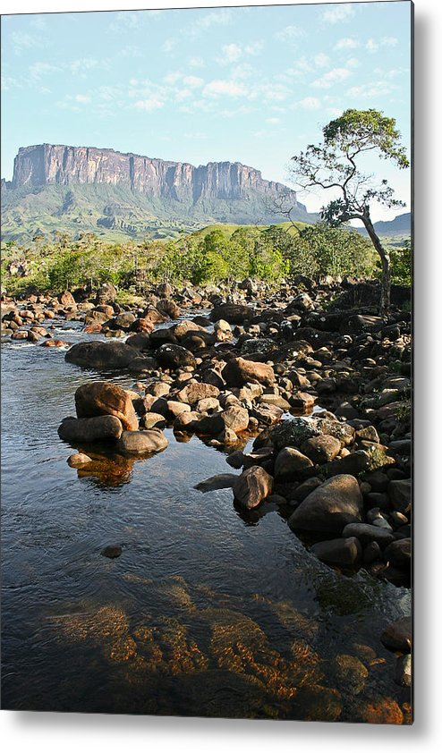 Landscape Metal Print featuring the photograph Tepui Formation by Ernesto Grossmann