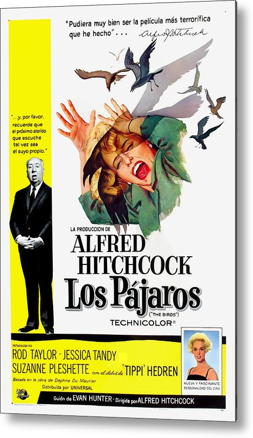 1960s Movies Metal Print featuring the photograph The Birds, Aka Los Pajaros, Alfred by Everett