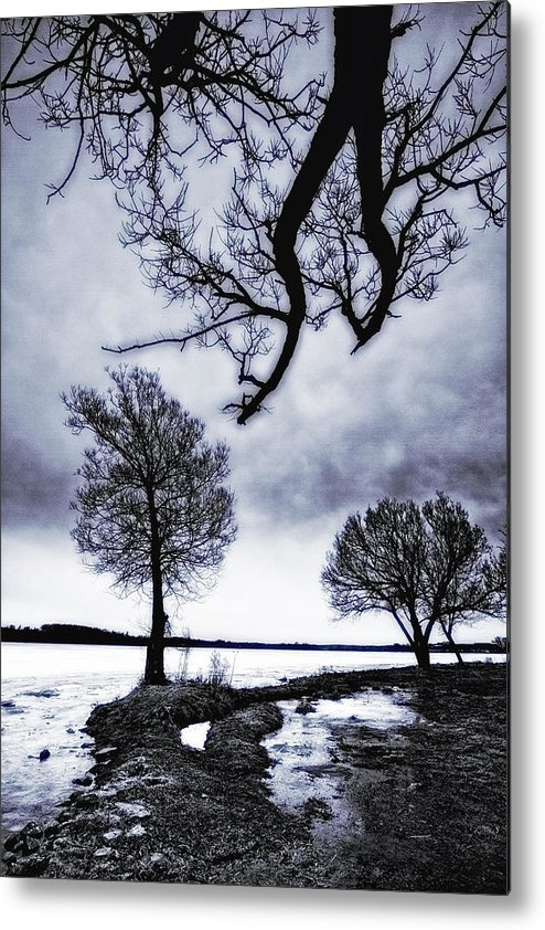 Lake Scugog Metal Print featuring the photograph The Borderline Of Truth by Russell Styles