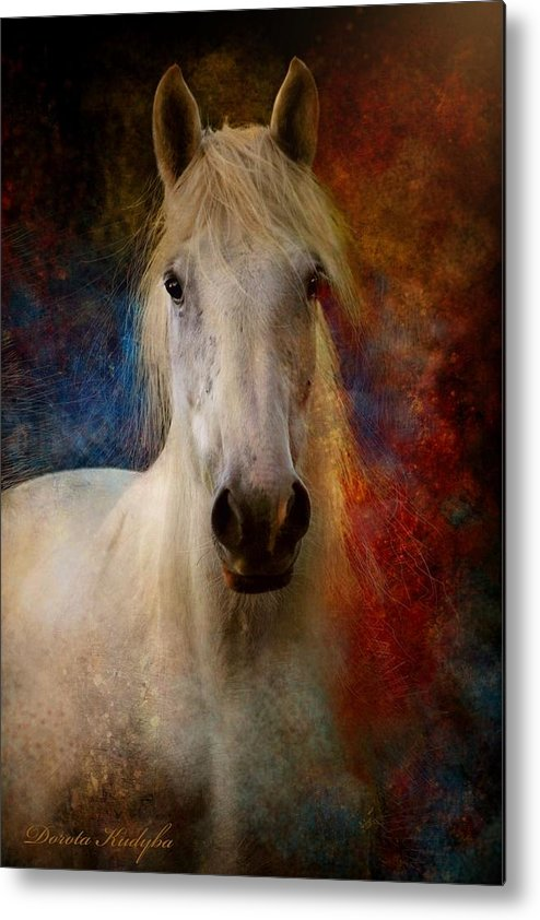 E Metal Print featuring the photograph The Colours Of Love. by Dorota Kudyba