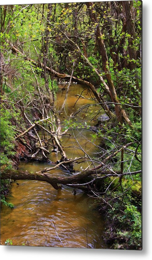 Creek Metal Print featuring the photograph The Creek by Lyle Hatch