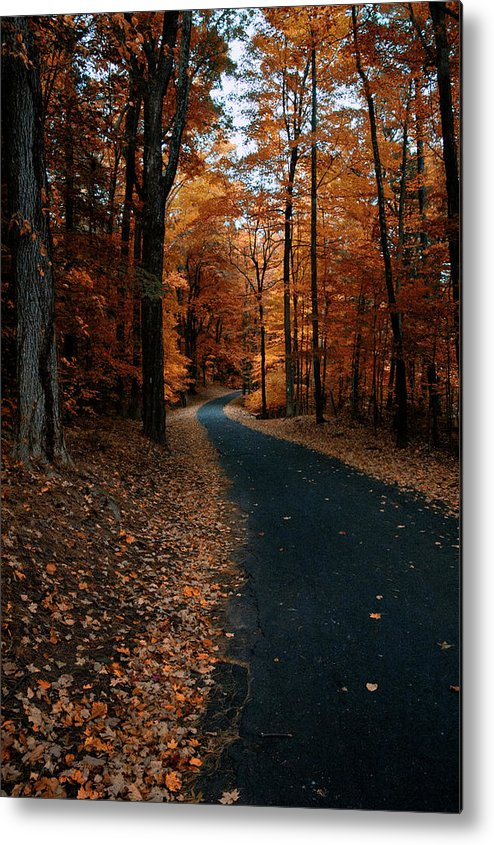 Autumn Metal Print featuring the photograph The Orange Road by Ross Powell