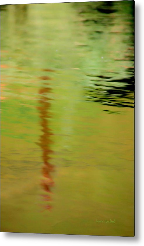 Water Metal Print featuring the photograph The Thin Red Line by Donna Blackhall