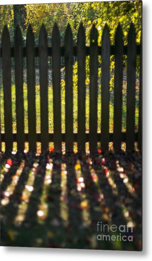 Fence Metal Print featuring the photograph Through The Fence by Hideaki Sakurai