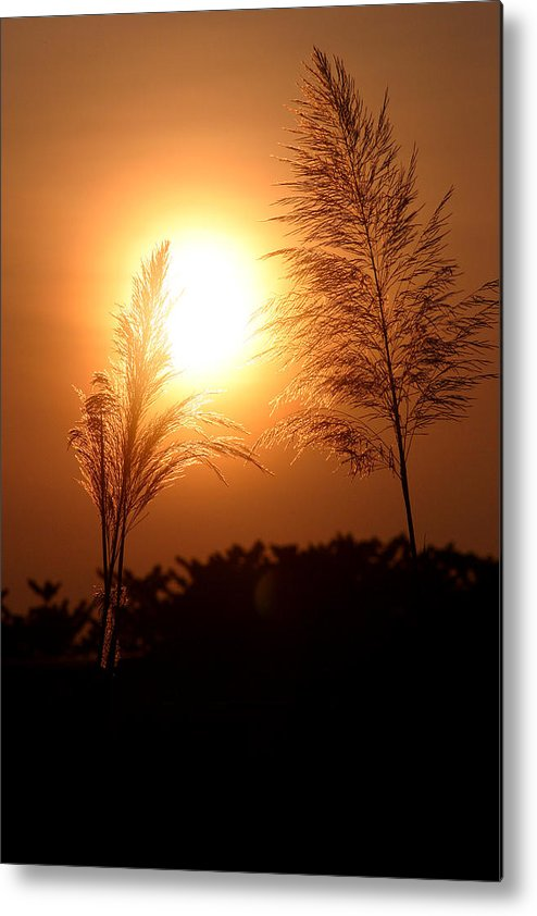 Landscape Metal Print featuring the photograph Together Forever by Mark Mah
