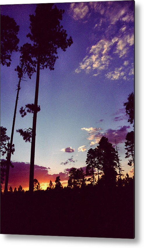 Arizona Sunset Metal Print featuring the photograph Two Pines Sunset by Randy Oberg