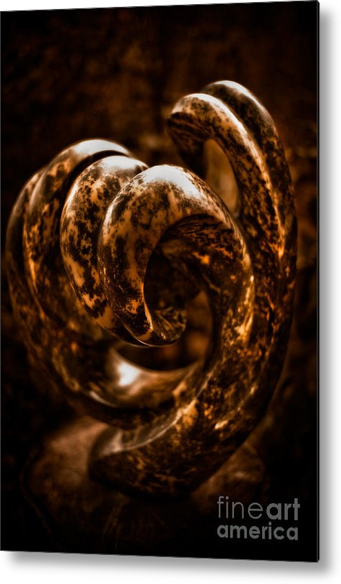 Art Metal Print featuring the photograph Unfurling by Venetta Archer