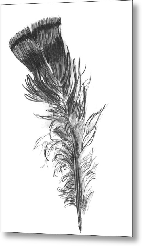 Wild Turkey Metal Print featuring the drawing Wild Turkey Feather by Kevin Callahan