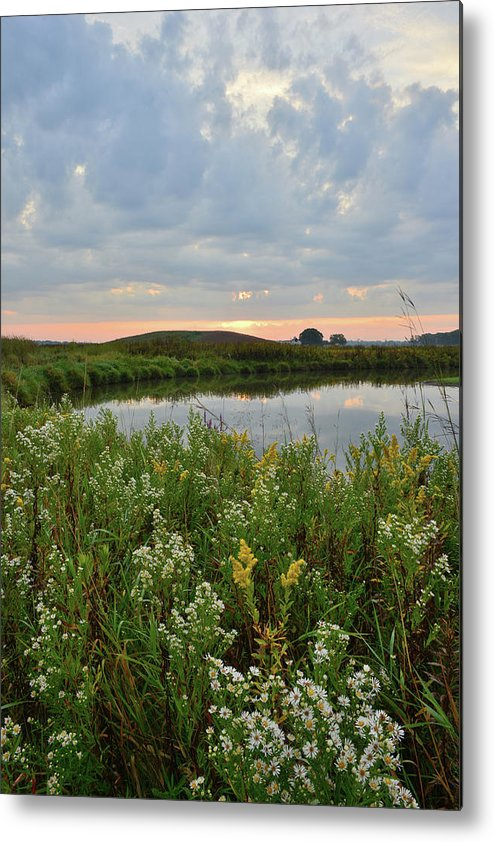 Glacial Park Metal Print featuring the photograph Wildflowers Along Nippersink Creek In Hackmatack Nwr by Ray Mathis