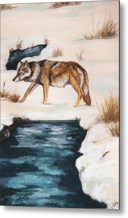 Coyote Metal Print featuring the painting Winter Coyote by Debra Sandstrom