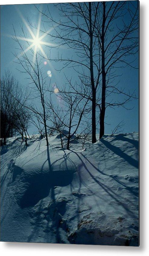 Winter Metal Print featuring the photograph Winter Glow by Raju Alagawadi