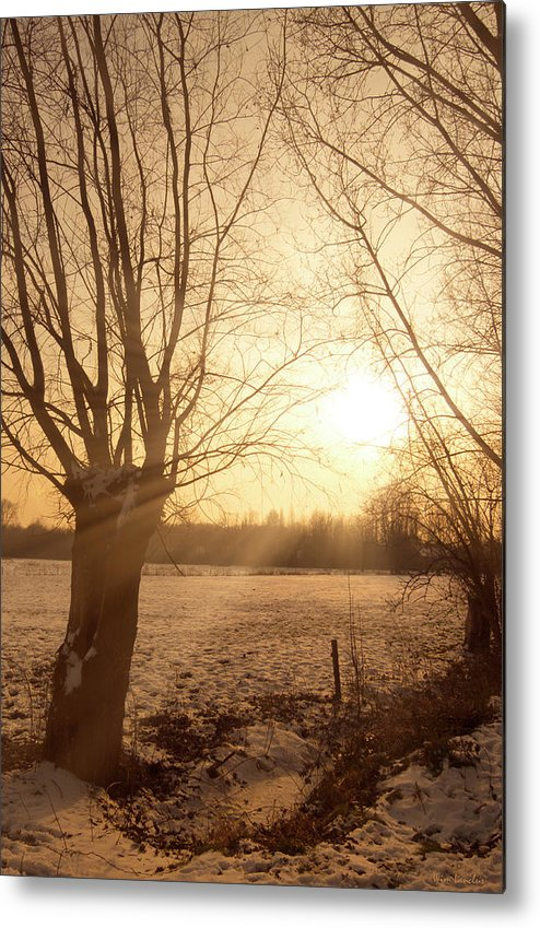 Sunset Metal Print featuring the photograph Winter Sunset by Wim Lanclus