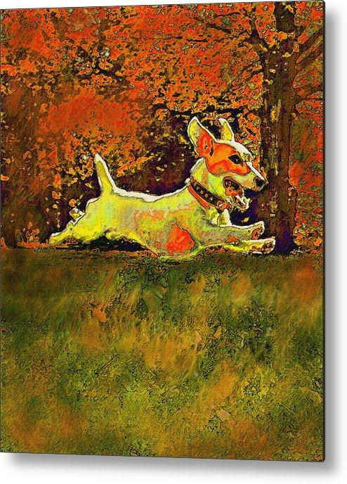 Jane Schnetlage Metal Print featuring the digital art Jack Russell In Autumn by Jane Schnetlage