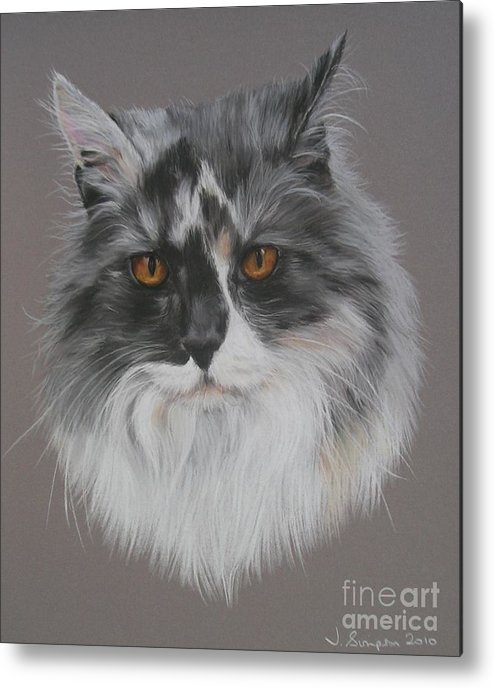 Pastel Pet Portrait Metal Print featuring the pastel Misty by Joanne Simpson