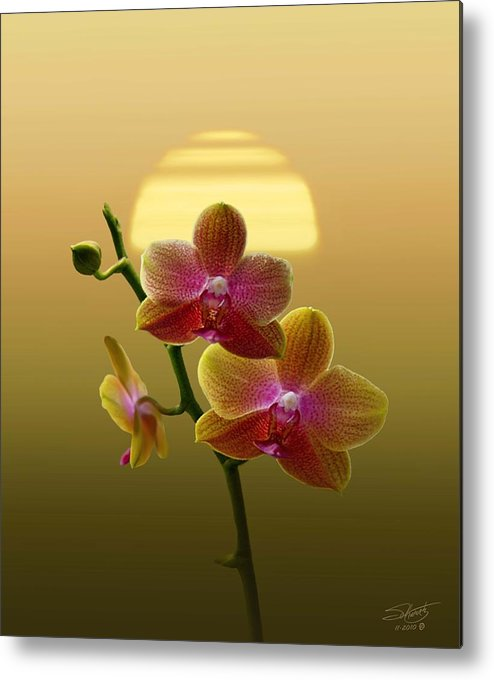 Orchid Metal Print featuring the photograph Golden Orchid Sunset by IM Spadecaller