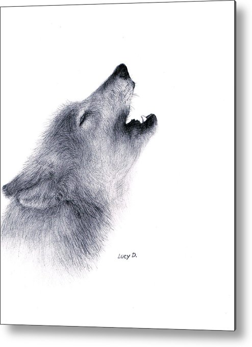 Wolf Metal Print featuring the drawing Howl by Lucy D