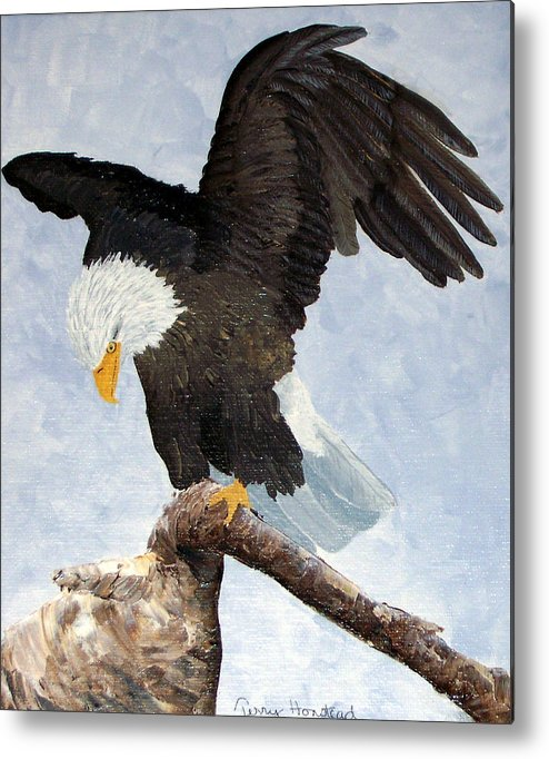 Eagle Acrylic Bird Nature Bird Patriotic Painting Metal Print featuring the painting Eagle Landing by Terry Honstead