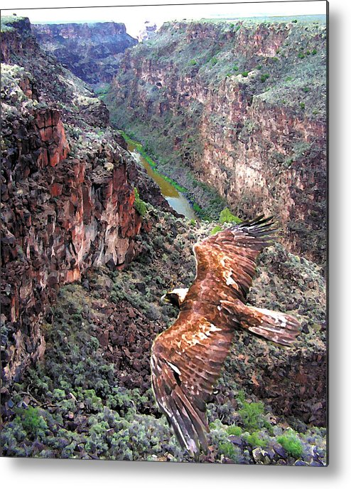Landscape Metal Print featuring the photograph Eagle Over Rio Grande Gorge by Kenny King