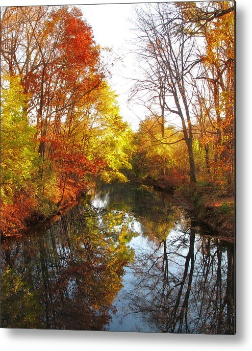 Landscape Metal Print featuring the photograph Fall Reflected by Jessica Jenney
