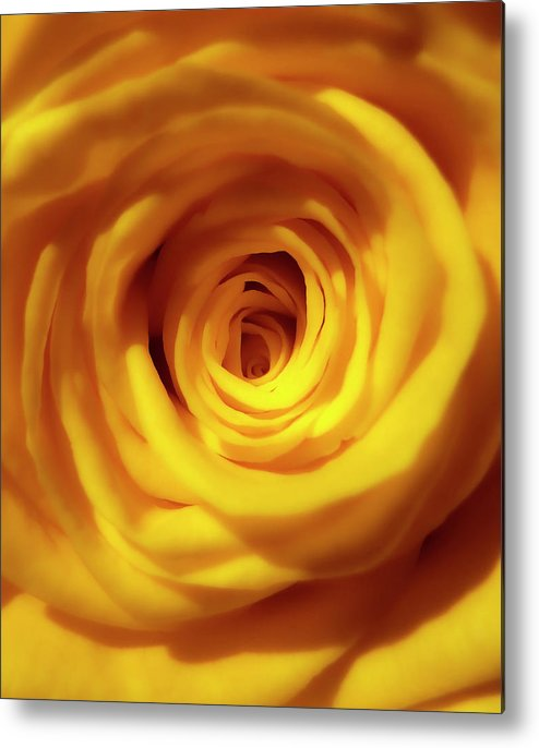 Macro Metal Print featuring the photograph Inner Beauty Of A Rose by Johanna Hurmerinta