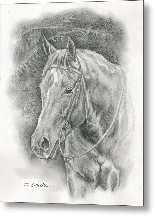 Quarter Horse Metal Print featuring the drawing Pretty Sunflower by Jana Goode