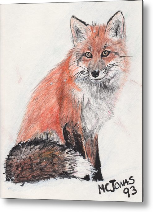 Red Fox Metal Print featuring the drawing Red Fox In Snow by Marqueta Graham