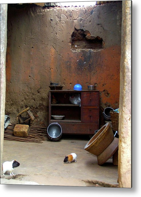 Guinea Pig Metal Print featuring the photograph Secret Room by Jamie Johnson