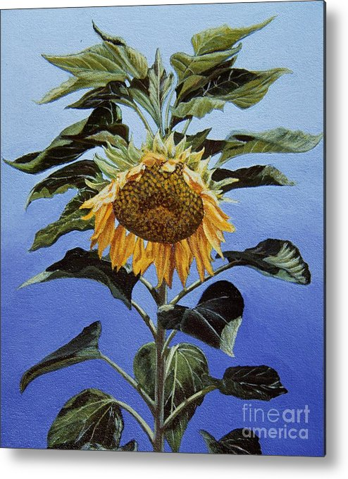 Sunflower Painting Metal Print featuring the painting Sunflower Nodding by Jiji Lee