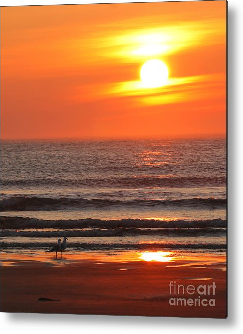 Ocean Metal Print featuring the photograph Sunrise On The Oceanside by Max Allen