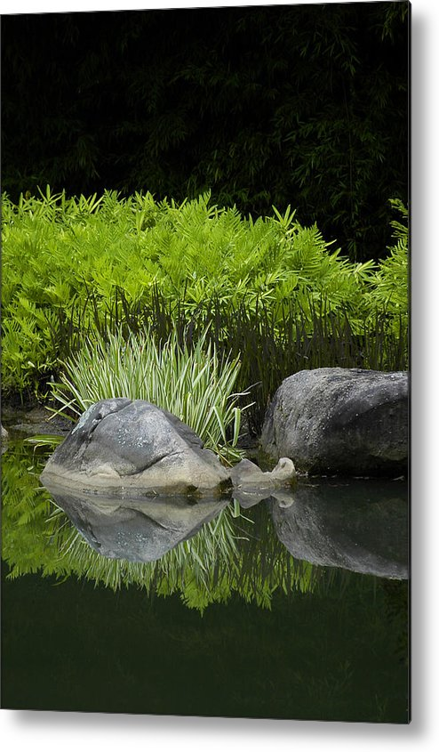 Water Metal Print featuring the photograph Balance by Deborah Gallaway
