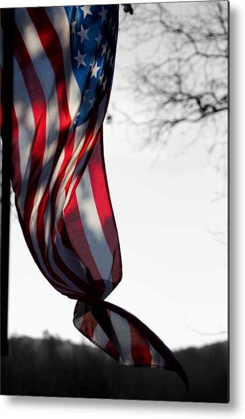 Flag Metal Print featuring the photograph Colors In The Wind by Lisa Johnston