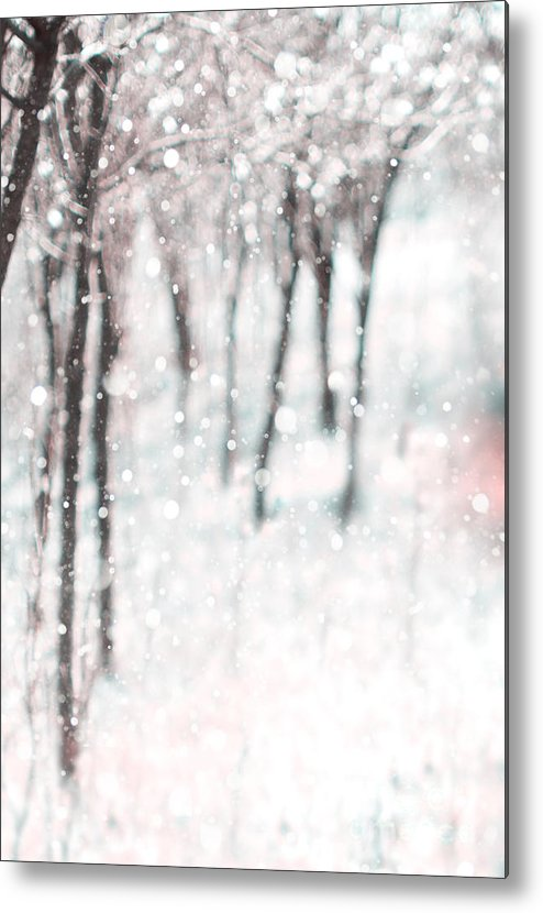 Snowing Metal Print featuring the photograph Abstract Nature Background by Marija Stojkovic