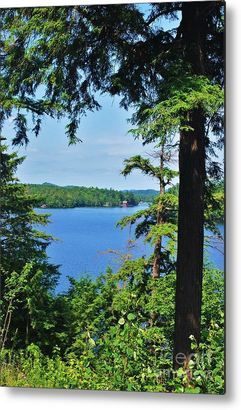 Metal Print featuring the photograph Adk2012 40 by TSC Photography Timothy Cuffe Jr