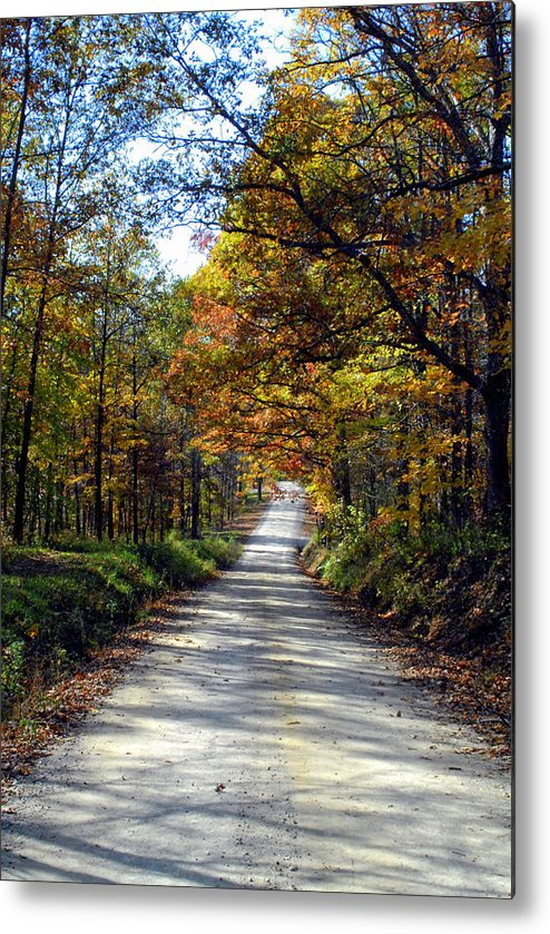 Fall Colors Metal Print featuring the photograph Brown County Lane by Libby Saunders
