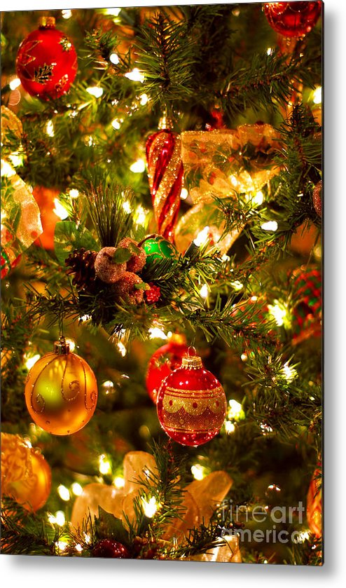 Christmas Metal Print featuring the photograph Christmas Tree Background by Elena Elisseeva