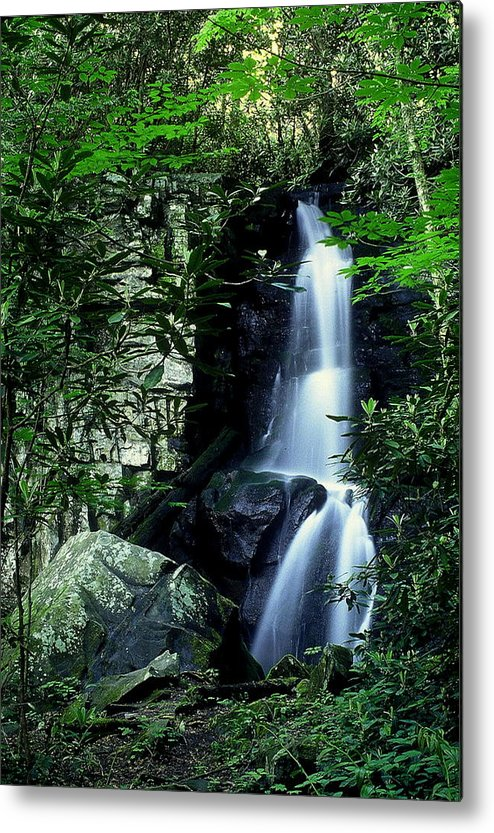Fine Art Metal Print featuring the photograph Deep In The Mountains by Rodney Lee Williams