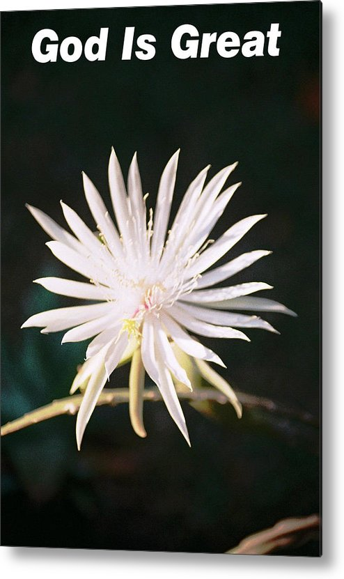 God Is Great Card With A Beautiful Metal Print featuring the photograph God Is Great 2 by Belinda Lee