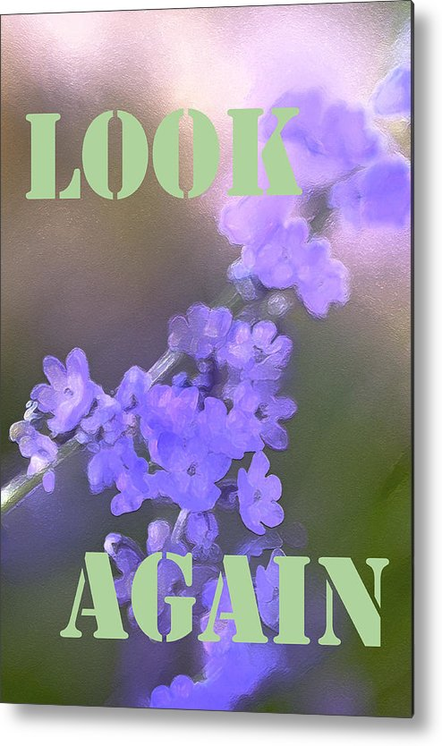Look Again Metal Print featuring the photograph Look Again by Pamela Cooper