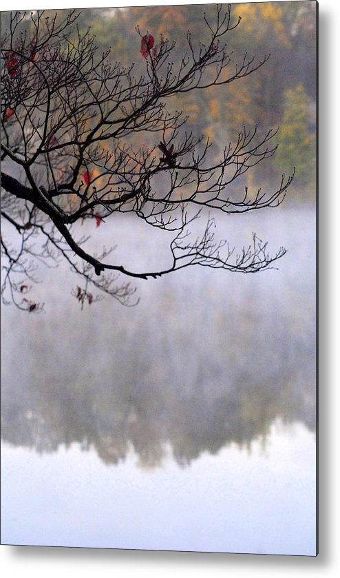 Lake Metal Print featuring the photograph Morning Fog Over Lake by Libby Saunders