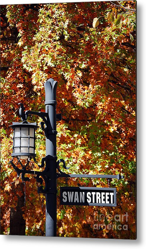 Scenic Tours Metal Print featuring the photograph Swan Street by Skip Willits