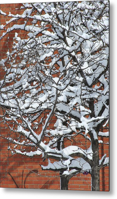 Snow Metal Print featuring the photograph The Snow And The Wall by Frederico Borges