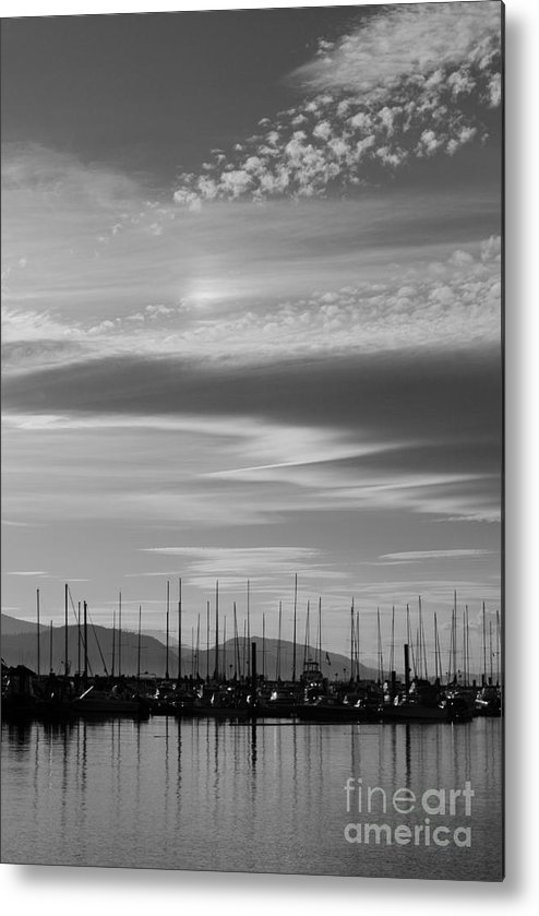 Metal Print featuring the photograph Thieves Bay by Sharron Cuthbertson