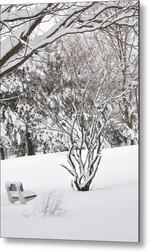 Winter. Snow Metal Print featuring the photograph Winter Bench by Frederico Borges