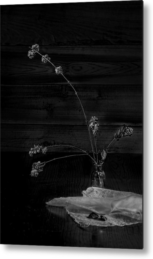Plant Metal Print featuring the photograph Winter Weeds In Bottle Black And White by Leah McDaniel