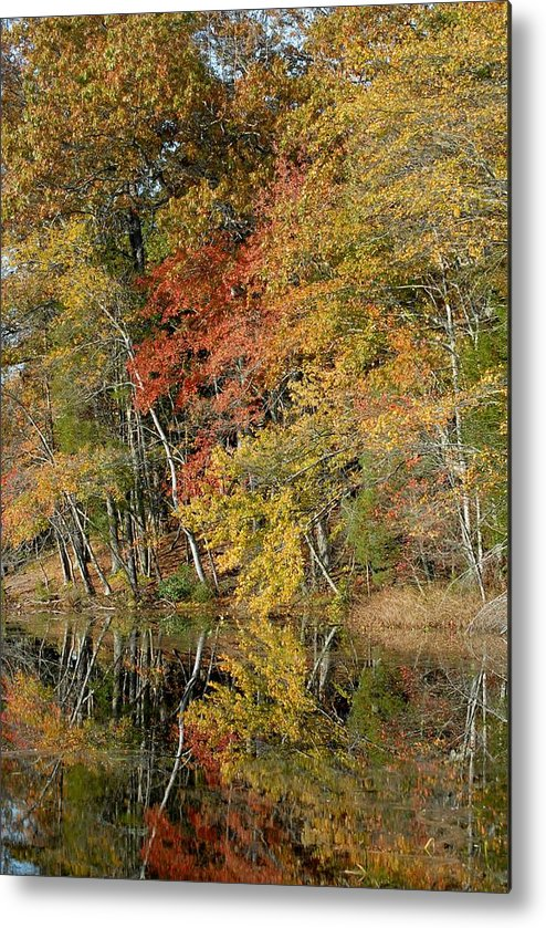 Autumn Foliage Art Metal Print featuring the photograph Autumn 45 by Joyce StJames