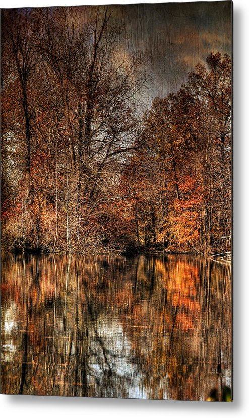 Season Metal Print featuring the photograph Autumn's End by Paul Ward