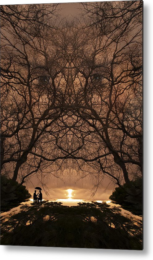 Art Metal Print featuring the photograph Eyes Of Secrecy by Jay Hooker