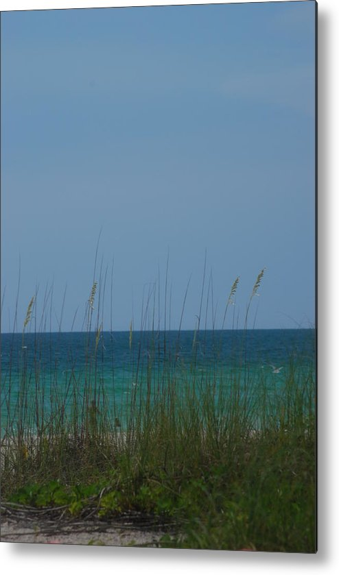Landscape Metal Print featuring the photograph Holmes Beach Florida 2 by Lisa Gabrius