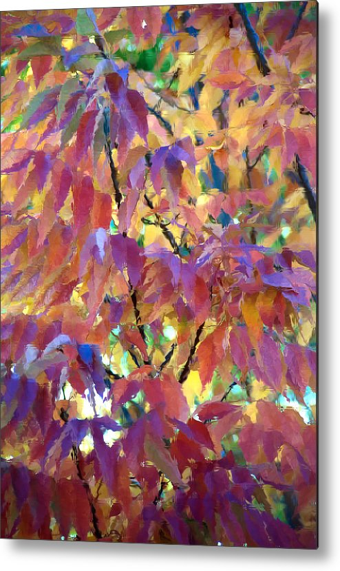 Ash Tree Metal Print featuring the photograph Autumn Ash Tree 3 by Steve Ohlsen